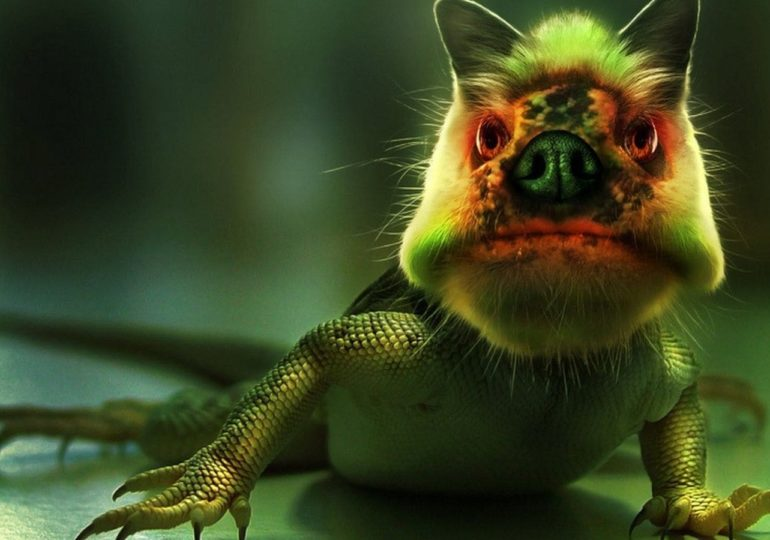 Ugliest animals - feature image